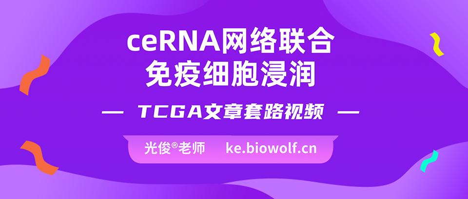 ceRNA网络联合免疫细胞浸润文章套路视频
