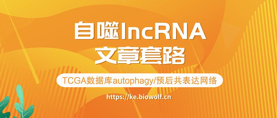 自噬lncRNA文章套路视频