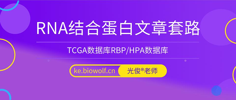 RNA结合蛋白五分文章套路视频(TCGA数据库RBP/HPA数据库)