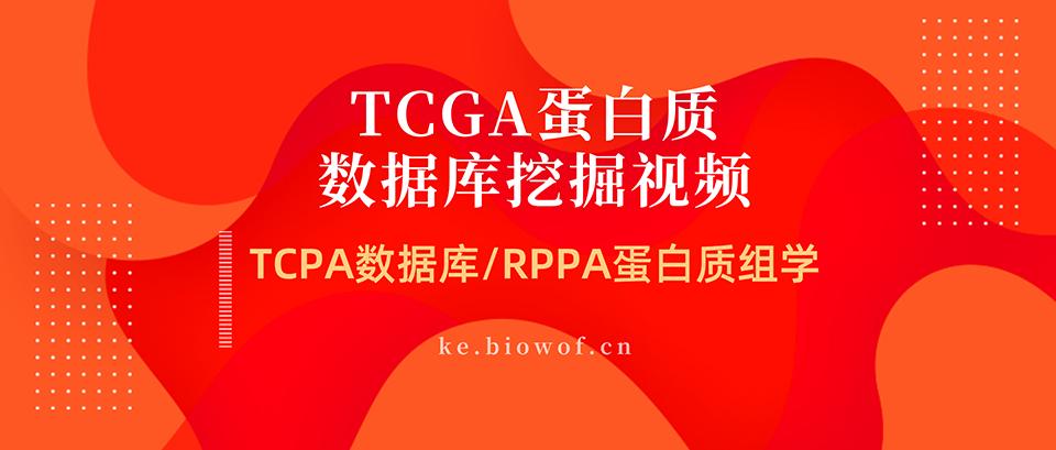 TCGA蛋白质数据库挖掘视频(TCPA数据库/RPPA蛋白质组学)