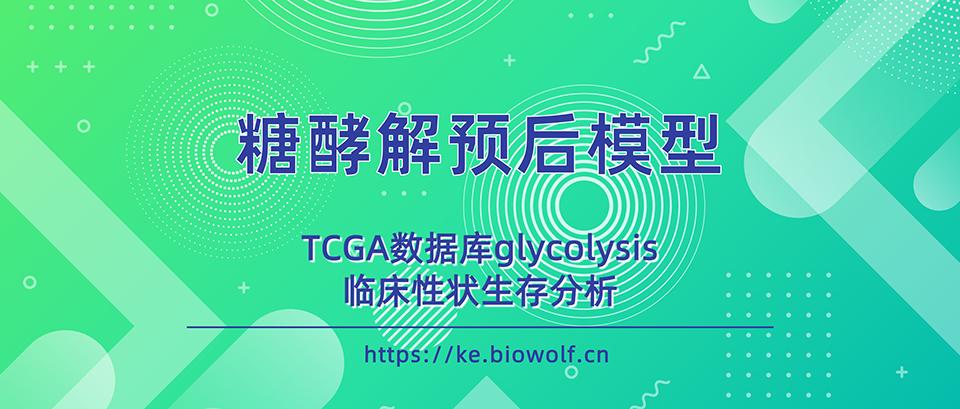 糖酵解预后模型文章套路视频(TCGA数据库glycolysis/临床性状生存分析)
