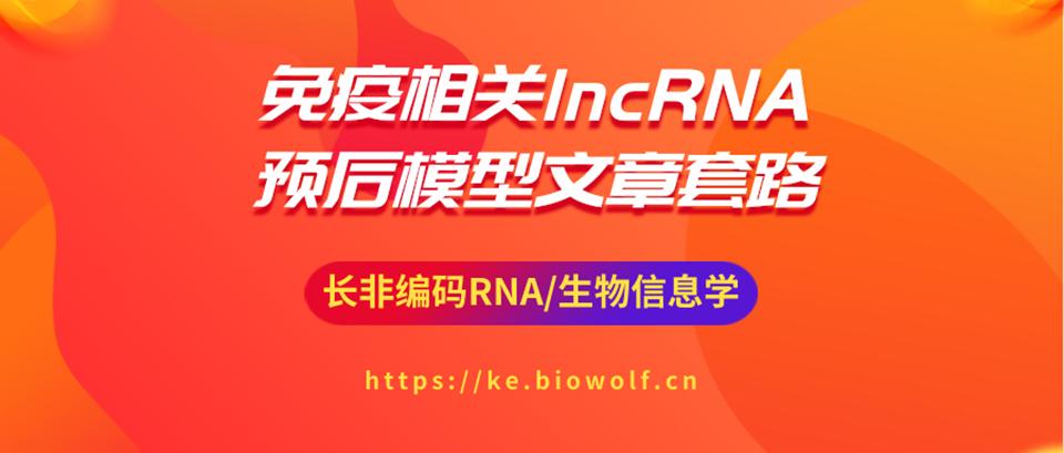 免疫相关lncRNA预后模型文章套路