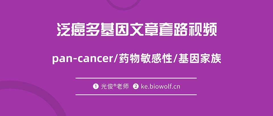 泛癌多基因文章套路视频(pan-cancer/药物敏感性/基因家族)