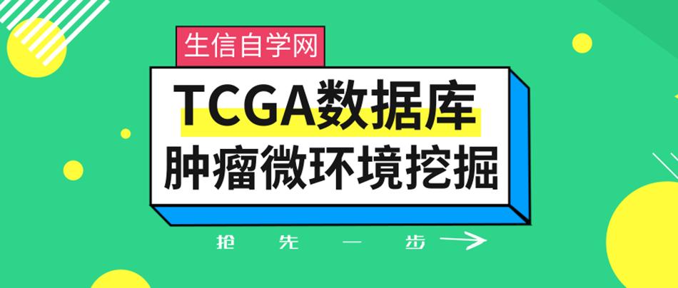 TCGA数据库肿瘤微环境